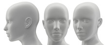 3d Rendering Illustration Of Face Human Collection