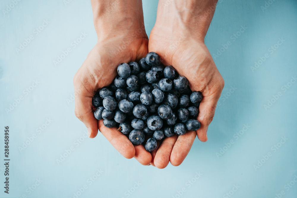 Obraz Closeup man holds blueberries in hands on a blue background. Source of vitamins and diet food or berries. fototapeta, plakat