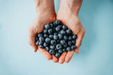 Closeup man holds blueberries in hands on a blue background. Source of vitamins and diet food or berries.