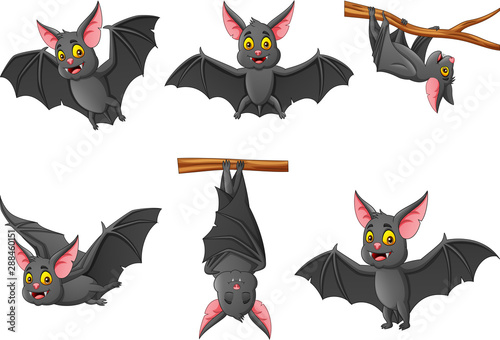 Set of cartoon bat with different expressions Poster Mural XXL
