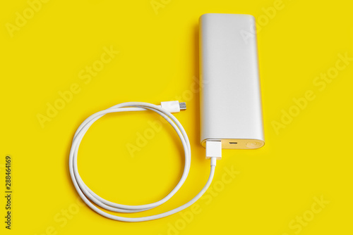 Stampa su Tela  Power bank for charging mobile devices