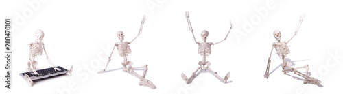 Funny Skeleton working on computer Canvas Print