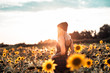 Tätowierte junge Frau abends im Sonnenblumenfeld