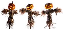 Halloween Pumpkin Scarecrow Is...