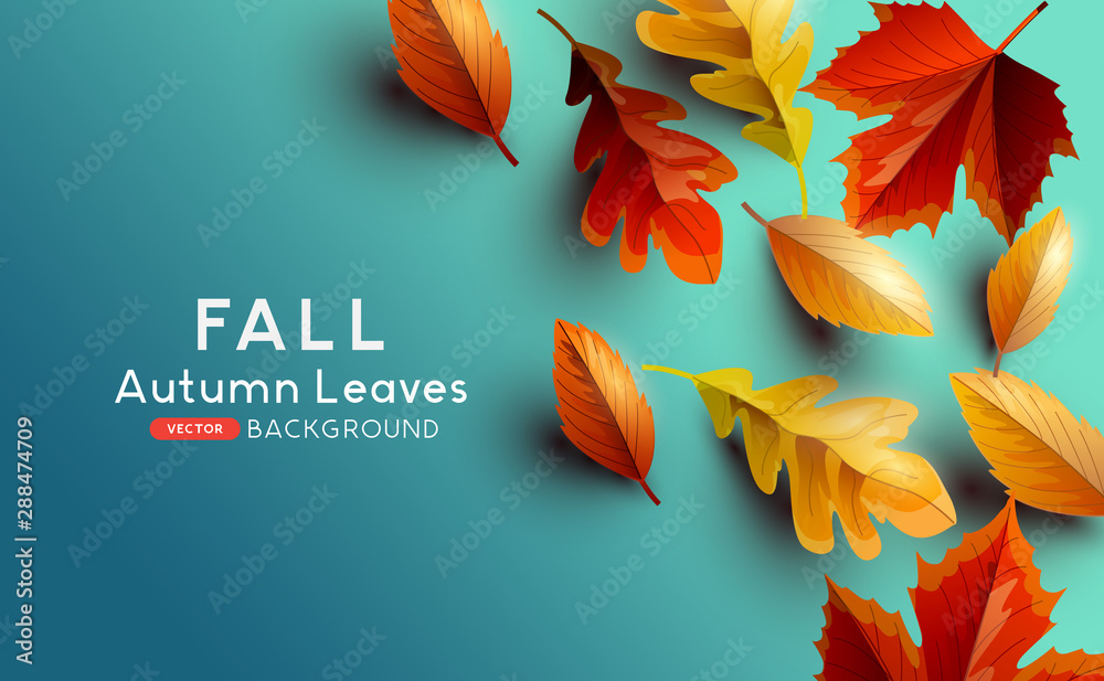 Fototapety, obrazy: Red and golden coloured Autumn leaves on a blue background. Vector illustration.