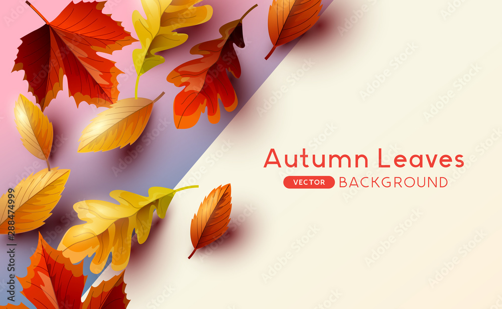 Fototapeta Autumn seasonal background frame with falling autumn leaves and room for text. Vector illustration