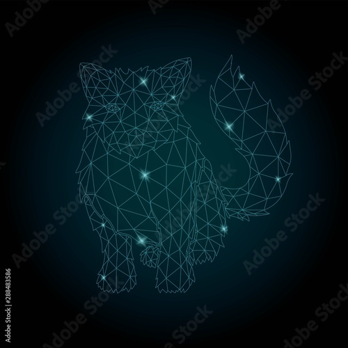 Fototapety, obrazy: Starry low poly art with shiny cat silhouette