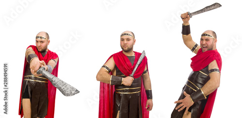 Gladiator isolated on white background Canvas-taulu
