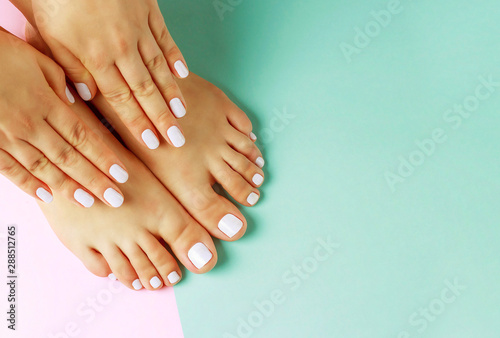 Female hands with white manicure and pedicure on a pink and blue background, top view