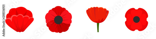 Poppy flowers icon set. Flat set of poppy flowers vector icons for web design - 288516931
