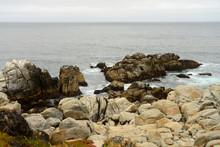 Cormorants Resting On The Rocks