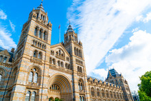 Natural History Museum Of Lond...