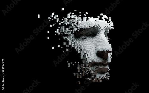Abstract digital human face Canvas Print