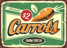 Carrots Vintage Tin Sign For Fresh Farm Vegetables. Retro Poster For Organic Product. Food Vector Illustration.