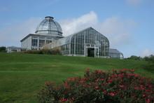Garden, Lewis Ginter Garden, Roses, Architect, Building, Glass, Sky, Blue Green