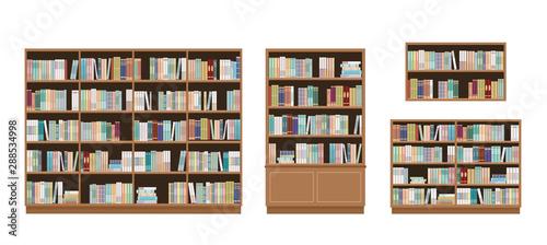 Obraz na plátně Bookcases and bookshelves full of books