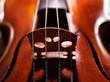 canvas print picture - Violine