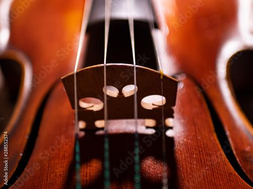 Violine - 288552574