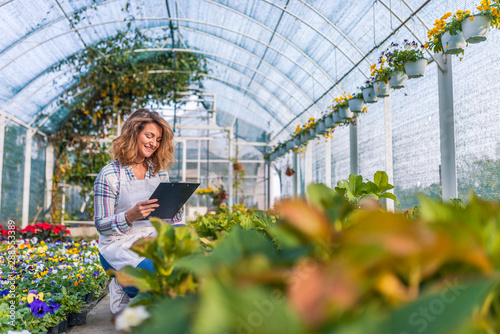 Fototapeta  Greenhouse worker taking notes in nursery.