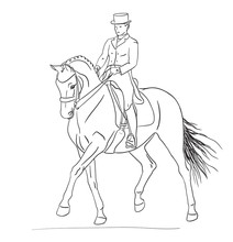 Vector Illustration Of A Rider And Horse Execute The Passage