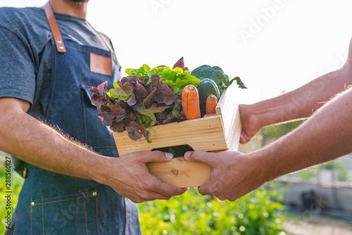 Obraz Fresh vegetables being sold at farmers marke - fototapety do salonu