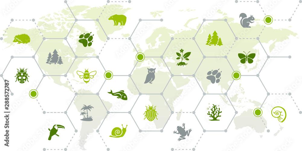 Fototapeta international wildlife / biodiversity icon concept – endangered animals icons with world map, vector illustration