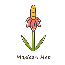 Mexican Hat Wild Flower Color Icon. Upright Prairie Coneflower With Name Inscription. Ratibida Columnifera Plant Inflorescence. Blooming Wildflower. Spring Blossom. Isolated Vector Illustration