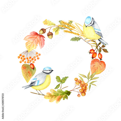 Poster Parrot Autumn leaf, berries and Tomtit birds Frame isolated on a white background. Watercolor hand drawn Bird BlueTit sitting on the Branch. Greeting card, poster, banner concept with copy space for text.