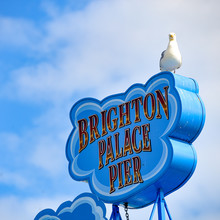 Brighton, England - August 2, 2019: A Seagull Sits On A Sign Above Brighton Pier