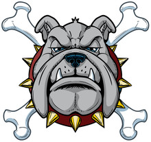 Cartoon Bulldog Mascot Head Wi...