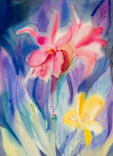 Abstract Watercolor Painting Colorful Of Canna Lily Flower