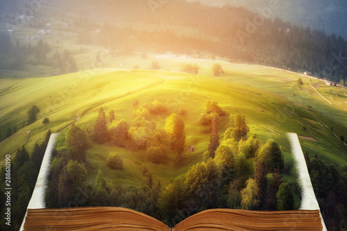 open fairytale magic book Wallpaper Mural