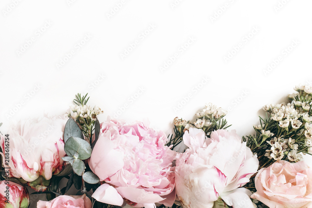 Fototapety, obrazy: Decorative web banner made of beautiful pink peonies, rosies and eucalyptus isolated on white background. Feminine floral frame composition. Styled stock photo.Empty space. Flat lay, top view.