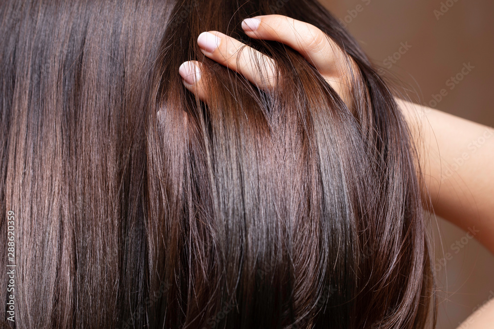 Fototapeta A beautiful brunette woman is seen closeup, stroking fingers through straightened and conditioned glossy brown hair with room for copy.