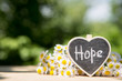 canvas print picture - Hope - inscription on the heart, sharing hope concept, green bokeh background