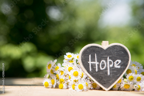 Valokuva Hope - inscription on the heart, sharing hope concept, green bokeh background