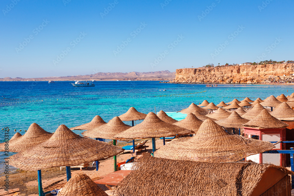 Fototapety, obrazy: Sunny resort beach with palm tree at the coast of Red Sea in Sharm el Sheikh, Sinai, Egypt, Asia in summer hot. Сoral reef and crystal clear water. Famous tourist destination diving and snorkeling
