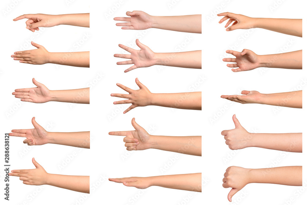 Fototapety, obrazy: Set of young woman hand showing something on white background.