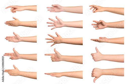 Set of young woman hand showing something on white background. Fototapet