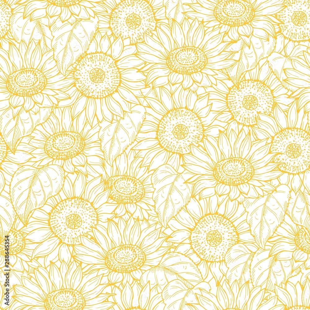 Fototapeta Sunflower seamless pattern. Vector line yellow flowers texture background. Illustration sunflower seamless pattern, floral spring