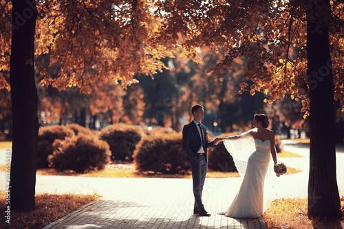 Foto auf Leinwand Dunkelbraun Newlyweds groom and bride walking in autumn park