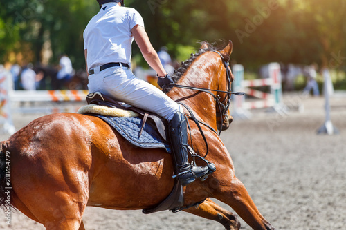 Fototapeta Young male horse rider on show jumping competition obraz