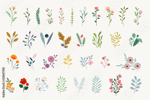 Zestaw elementów kwiatowych do grafiki i projektowania stron internetowych. Ilustracje wektorowe dla piękna, mody, produktów naturalnych i organicznych, spa i wellness, ślubu i imprez, środowiska.