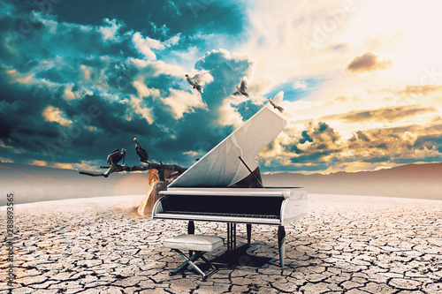 Piano in nature.Surreal image related to piano music,song and melody.Sunset and dry soil scenic landscape.Birds and cracked floor - 288693565