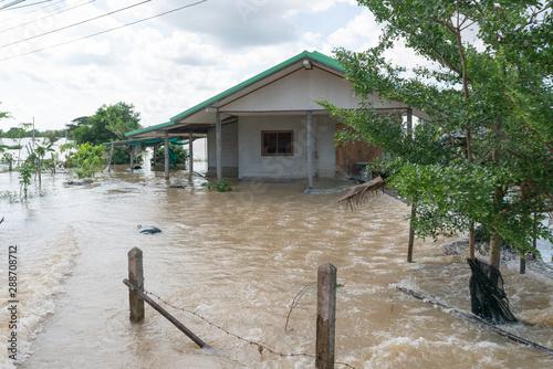 Flooded house. Fototapet