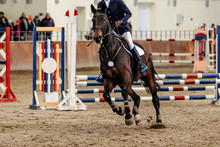 Man Rider Equestrian In Horse Show Jumping Competition