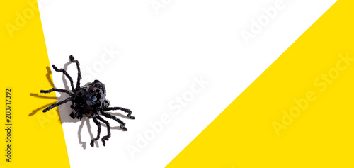 Halloween black spider - overhead view flat lay