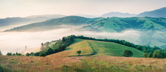 Foggy morning landscape of mountain countryside with old country road. Bright summer panorama of Carpathians, Ukraine, Europe. Beauty of nature concept background.