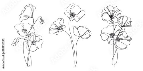 Continuous Line Drawing Set Of Plants Black and White Sketch of Poppy Flowers Isolated on White Background.  Poppies Flowers One Line Illustration. Vector EPS 10. - 288736333