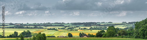 Poster Taupe panorama of rural landscape